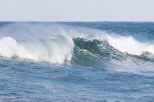 ocean-571340_640