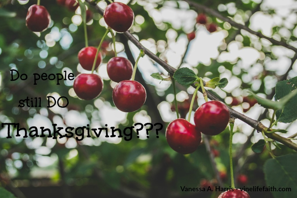 thanksgiving-really