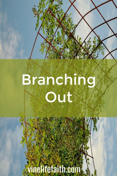 The year is still new. Are you branching out and doing a new thing?