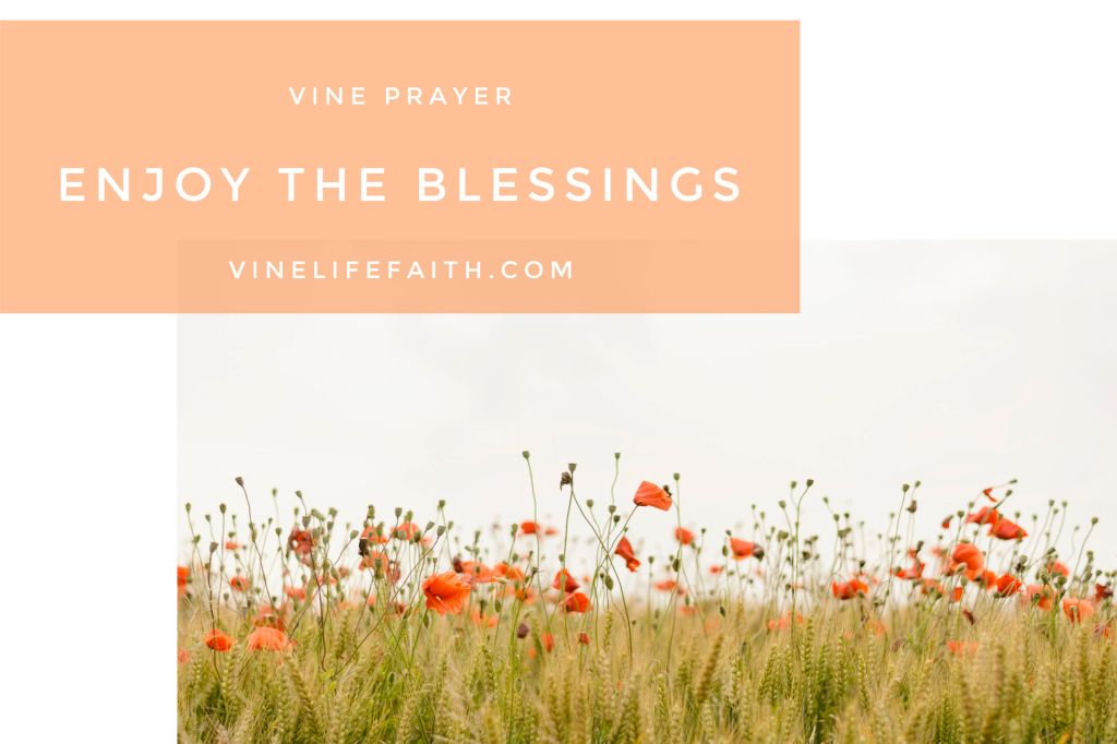 Pray God's Word to Enjoy the Blessings You Long For