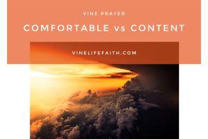 Comfortable vs Content