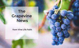 Sign up for The Grapevine News
