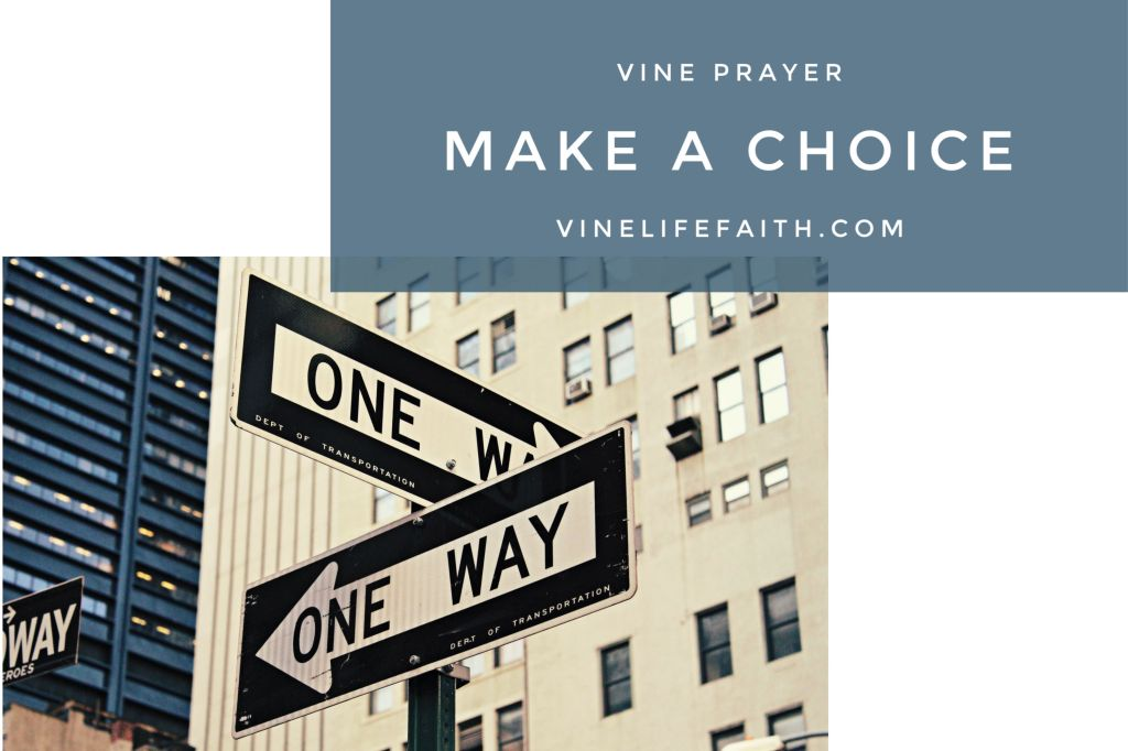 Street scene featuring several one-way signs with text overlay saying vine prayer, make a choice, vinelifefaith.com