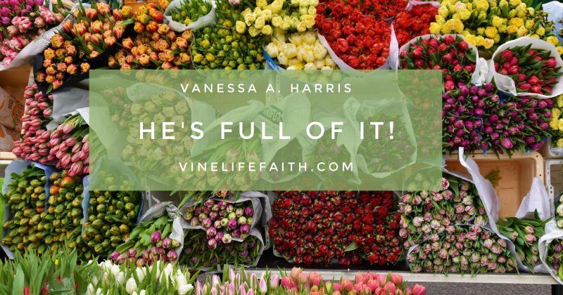 Vanessa A Harris, He's Full of It, vinelifefaith.com